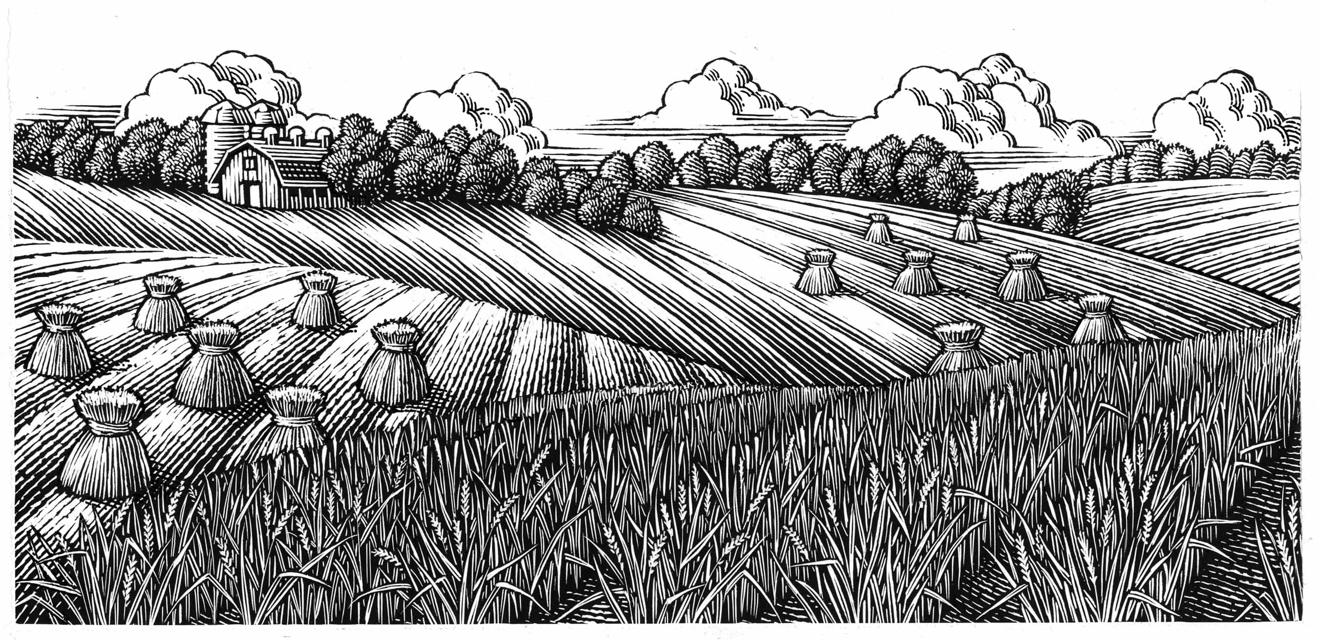 Line art, line engraving style illustration of rolling farm fields by Keith Ward
