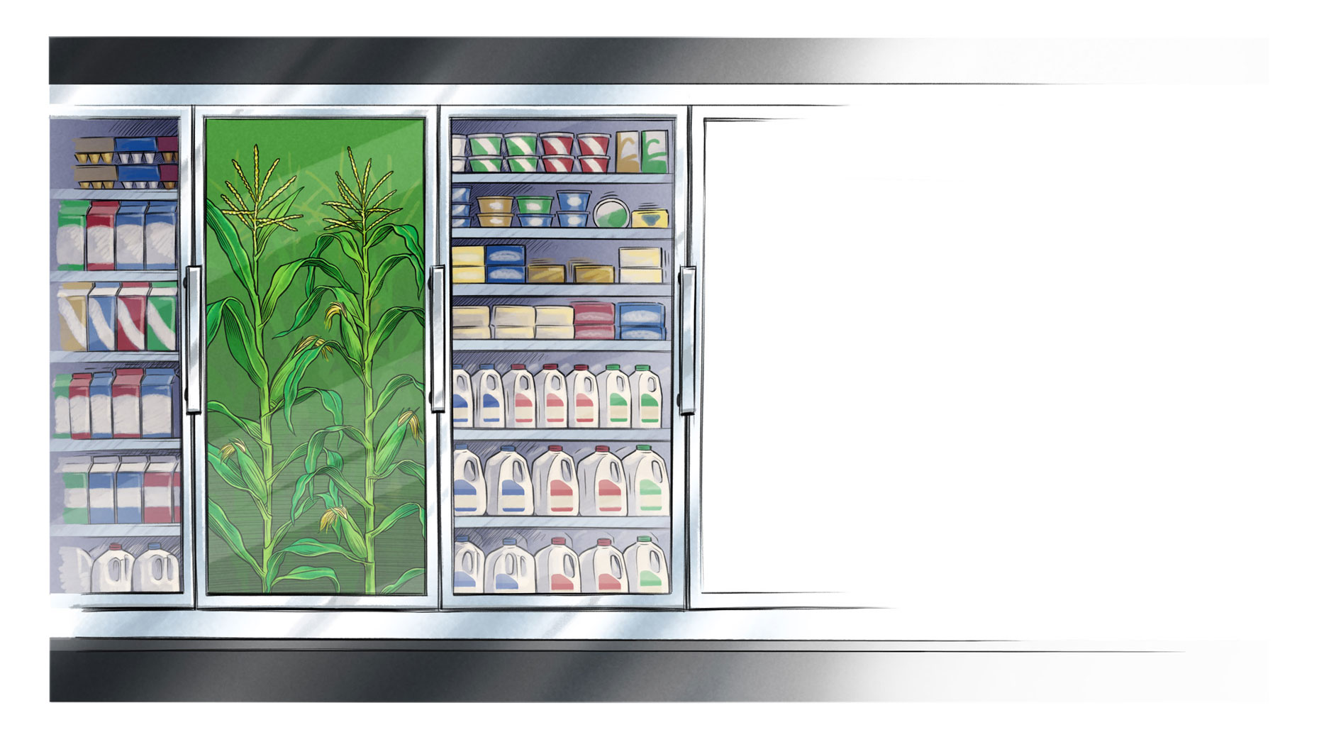 dairycaseKeith Ward Client Comp Illustrations